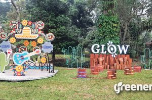 Glow Kebun Raya Bogor