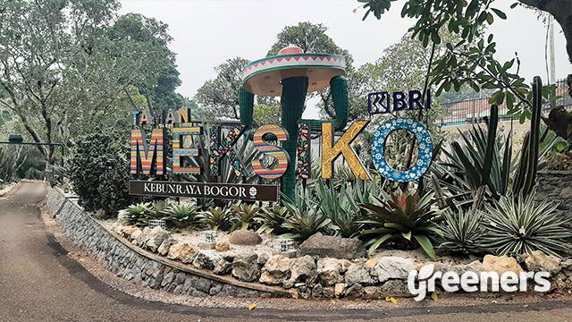 Taman Meksiko Kebun Raya Bogor