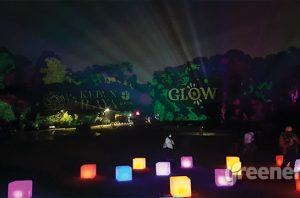 Glow di malam hari