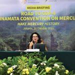 Indonesia larang merkuri