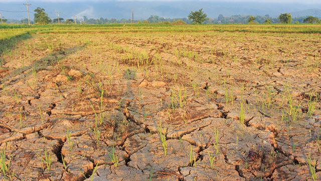 Ancaman krisis iklim