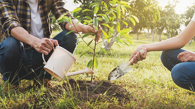 Tanam pohon peduli perubahan iklim